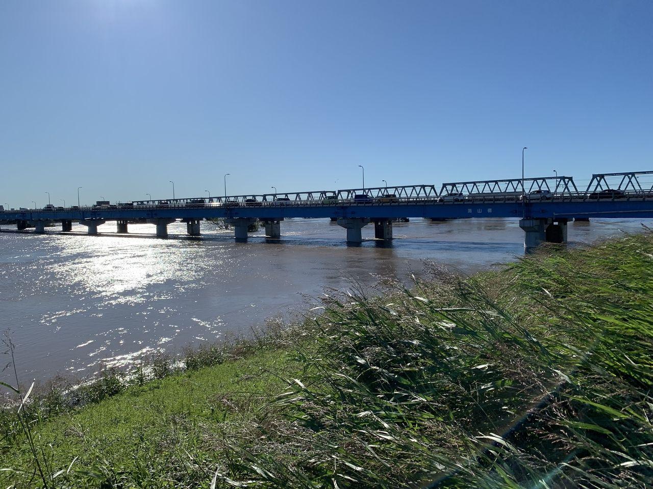 江戸川の状況