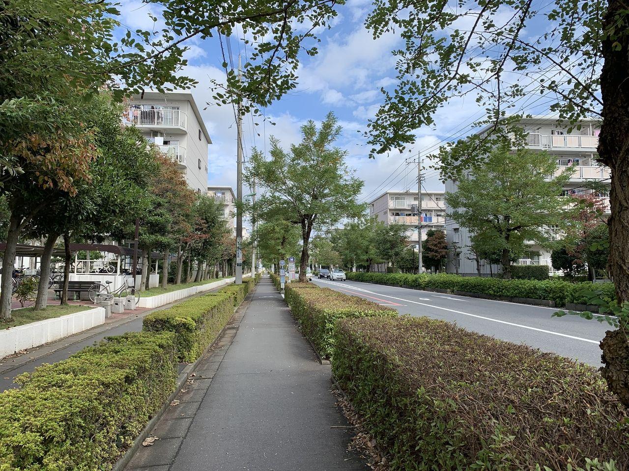 三郷駅から早稲田団地までは、駅前通り一本で徒歩圏です。